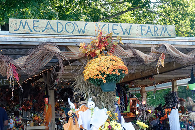 Meadow View Farm_2015