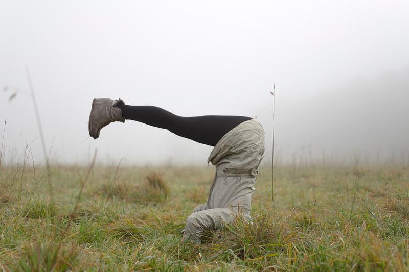 Mari Yoga
