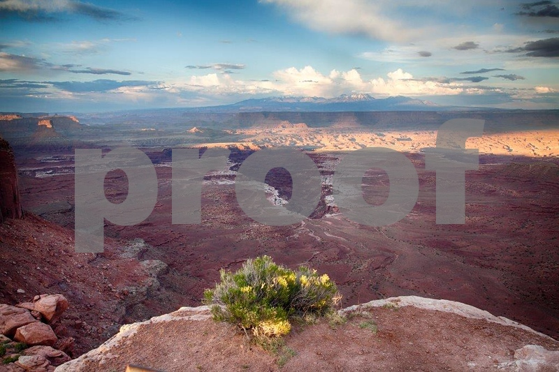 Canyonlands, Buck Canyon  6276_HDR.jpg