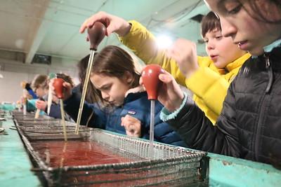 MS 6th Fish Hatchery 1-24-20