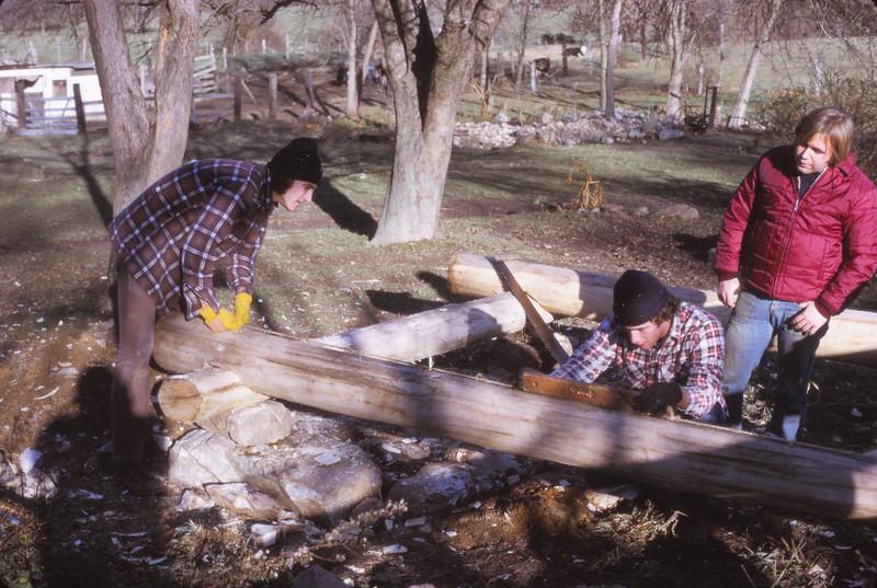 Cabin 1975 - 022.jpg