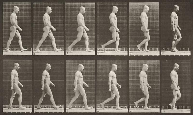 Nude man walking (Animal Locomotion, 1887, plate 6)