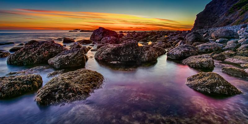 Coastal_Tribolet-83.jpg
