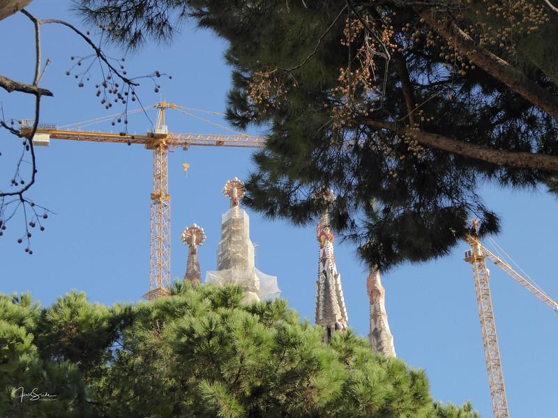 Barcelona December 2014-30.jpg
