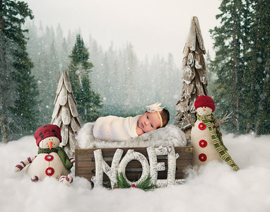Adrianna's Newborn Session