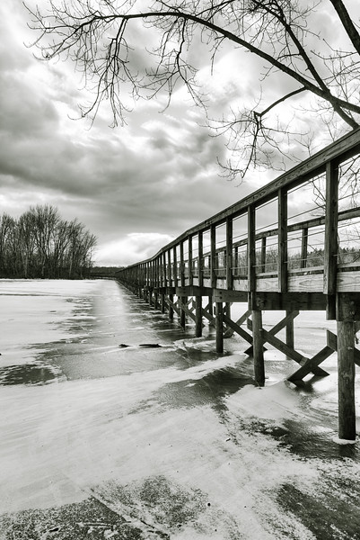 Winter at Hoover Mudflats // 2