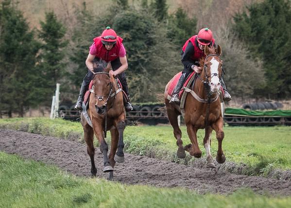 Fergal O'Brien Racing