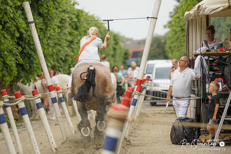 Ringrijden in Wemeldinge