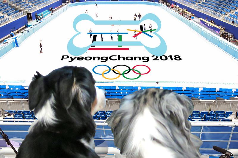 OlympicFigureSkate.jpg