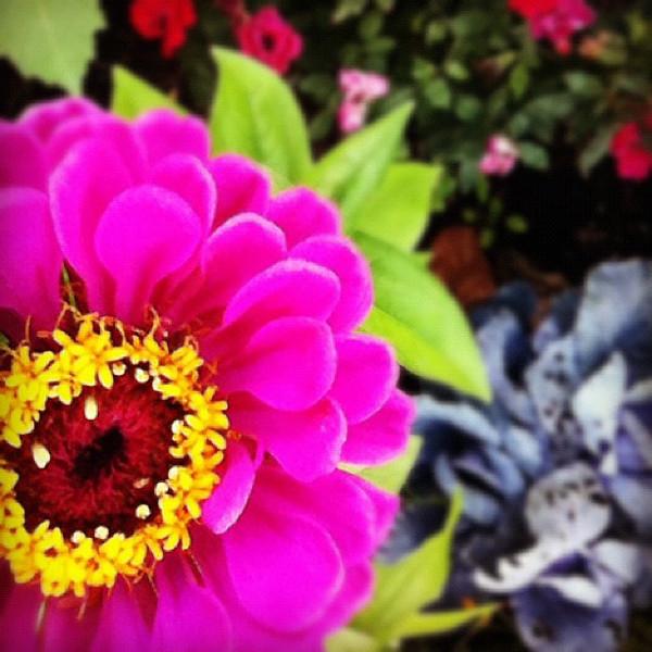 2012-05-23_1337777598.jpg