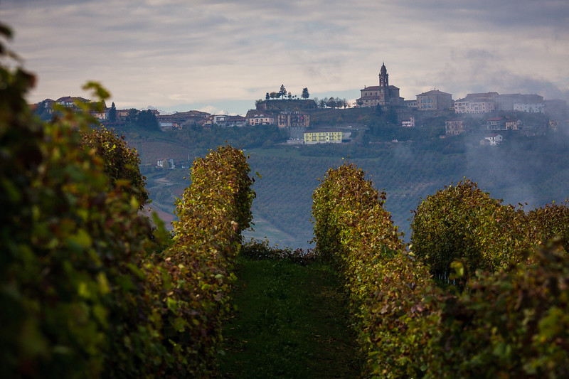 LANGHE_085_1010@ANDREAFEDERICIPHOTO.jpg