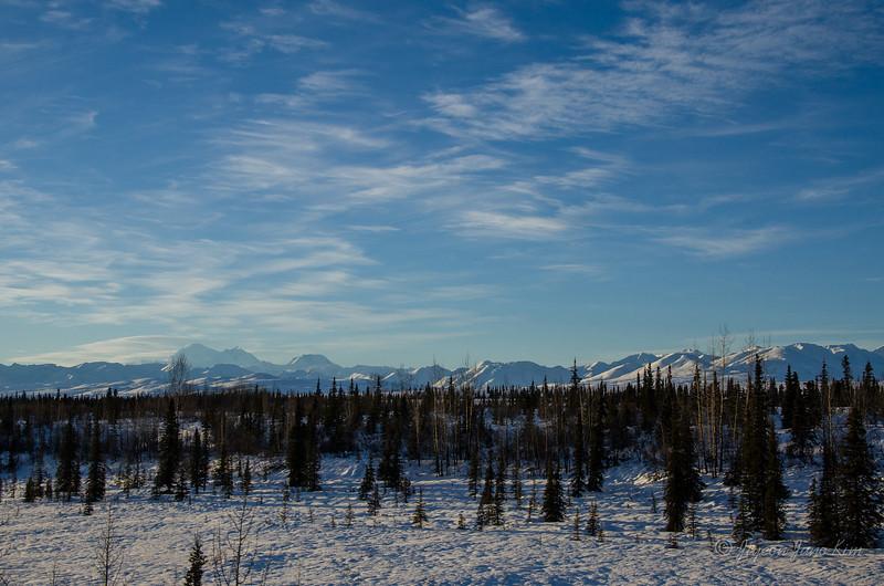 USA-alaska-Alaska Railroad-2248.jpg