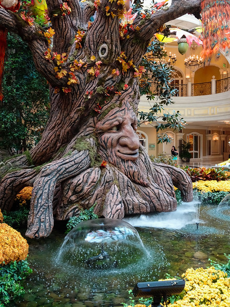 The Bellagio Conservatory done up for fall.