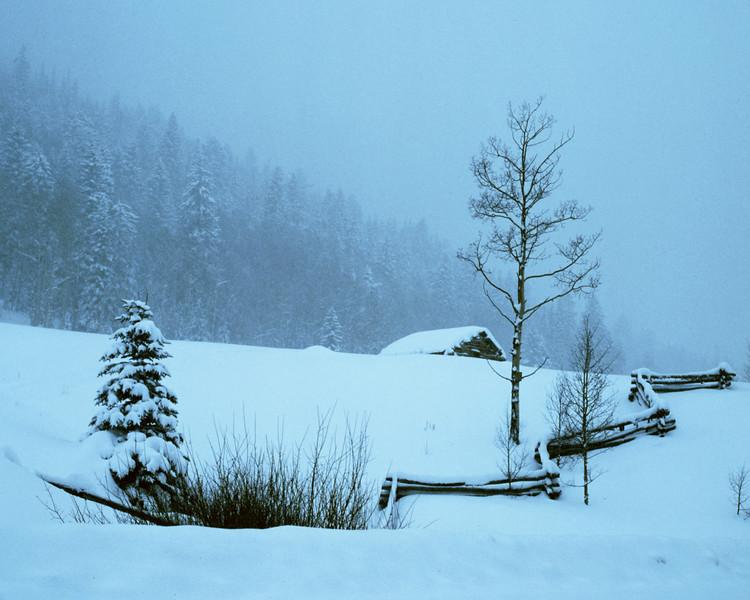Snowy Cabin.jpg