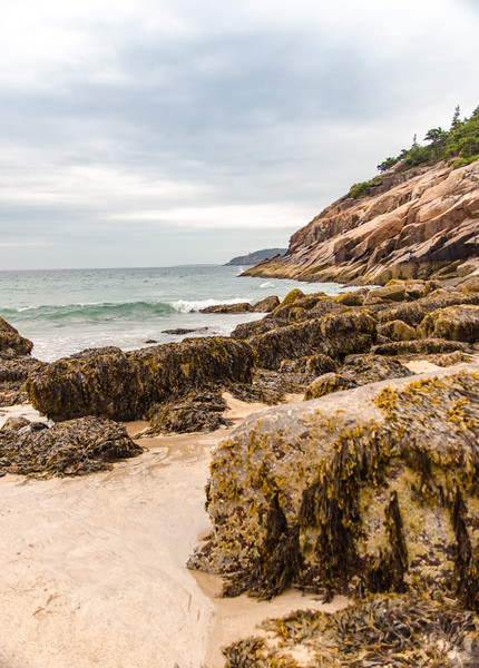 Acadia Nat'l Park-Terry's - July 2017-124-Edit.jpg