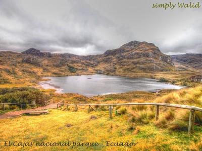 El Cajas parque naciónal - Ecuador