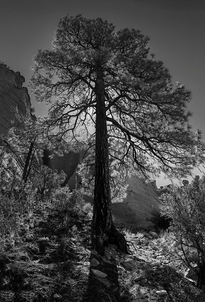 Tent Rocks with Mary and Norm Sept. 2016