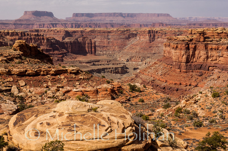 Overlooking the Colorado Plateau, Canyonlands National Park, UT.