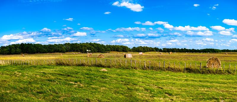 Horn Ranch-.jpg