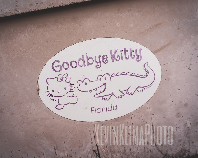 Goodbye Kitty - Florida