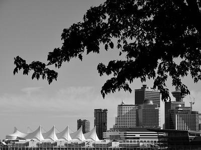 Vancouver Scenes