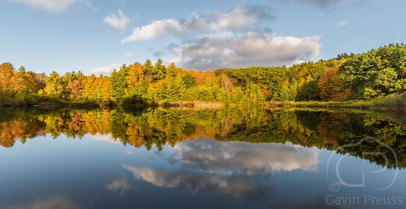 Autumn-1564.jpg