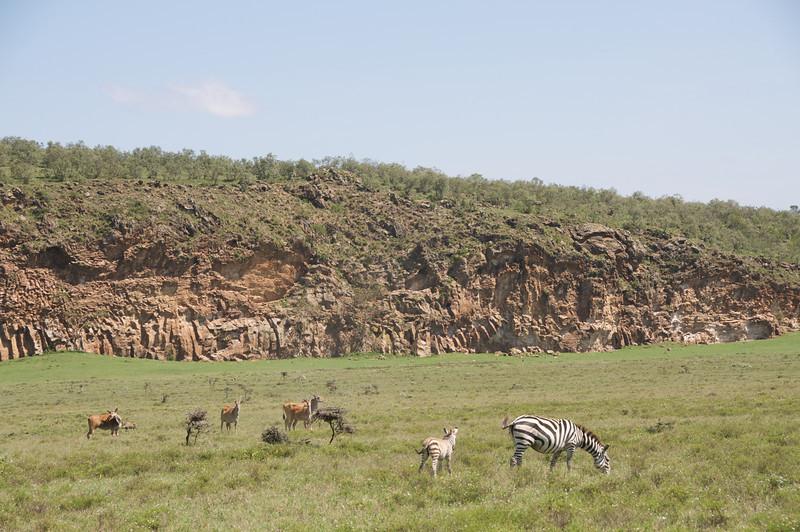 Kenya.Card1.02.2014 275