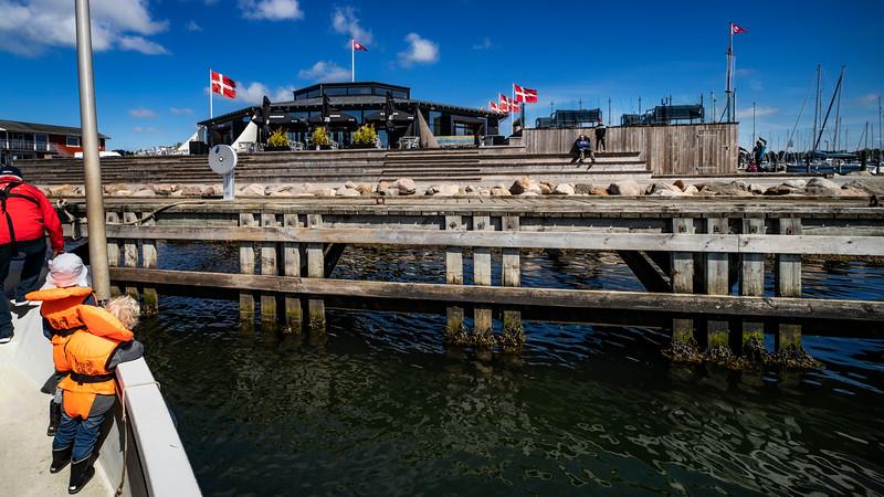 Horsens Lystbådehavn_Hanne5_250519_549.jpg