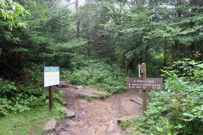 Grandfather Trail -- Calloway Gap -- 5,600'