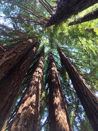 2014 - Seattle, So Cal, hiking