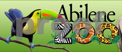 jaguar-escapes-enclosure-attacks-monkey-at-texas-zoo