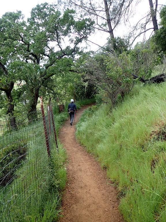 Oat Hill Mine Trail Calistoga California