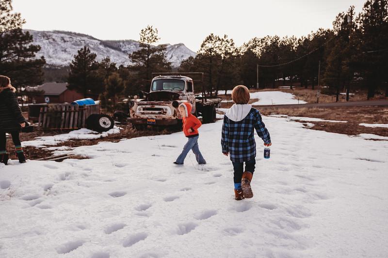 snowMLK-2940.jpg