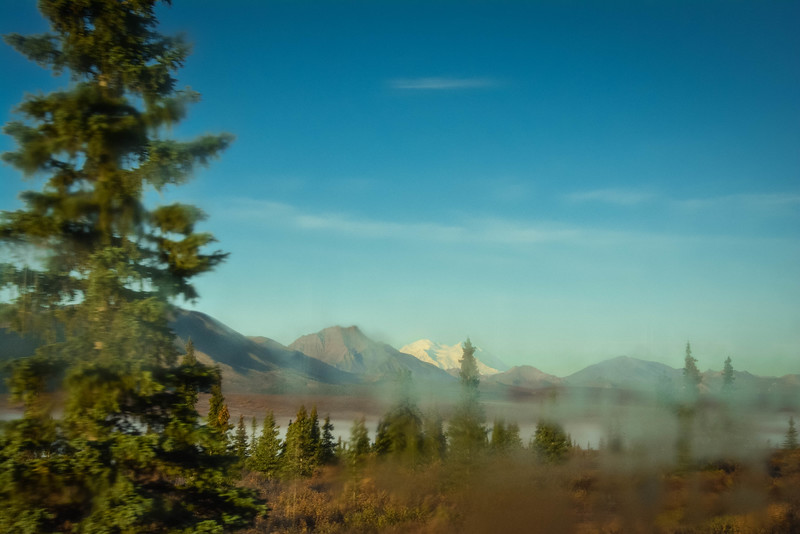 Denali-National-Park-50.jpg