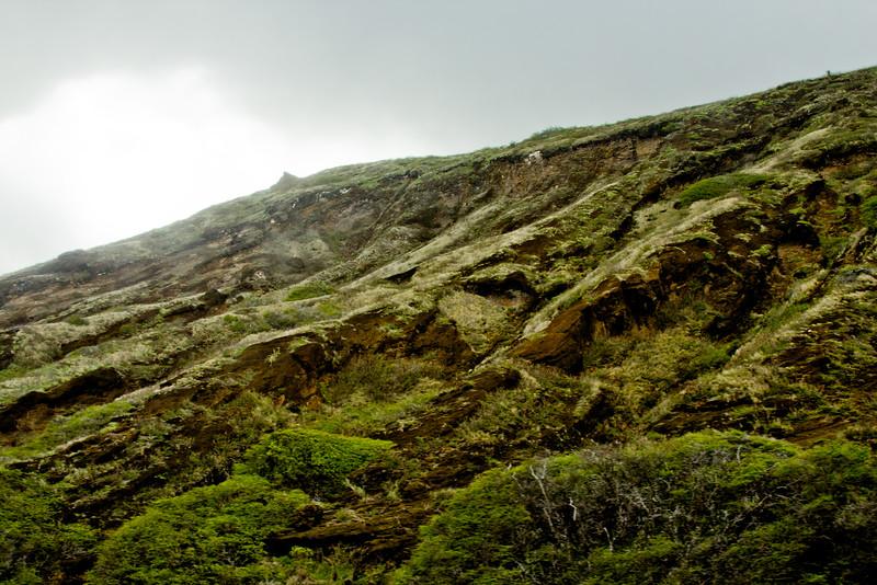 Journey into Oahu Photograph 183