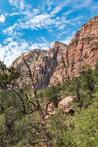Zion National_2886
