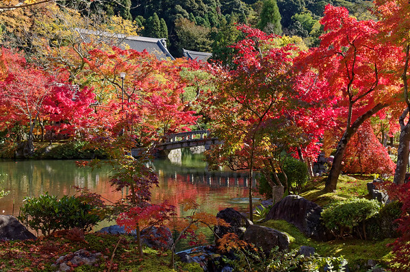 Eikan-do Temple, Kyoto, in Fall Color 2