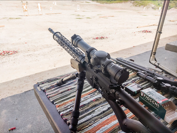 Elcan Spectre TR on a California-legal AR (yes, this state stinks so so much)