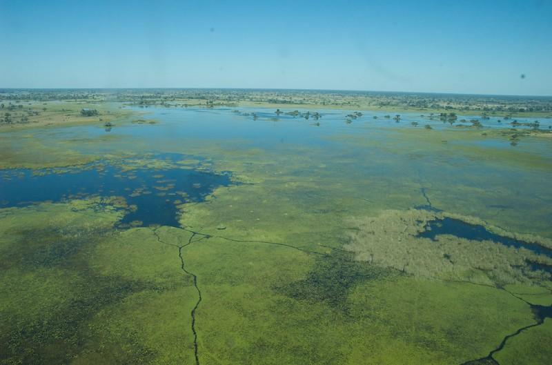 Above the Okavango Delta - Leslie Rowley