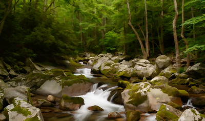 NC-Great Smoky Mountains National Park