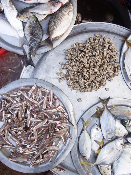 fish market 3.jpg
