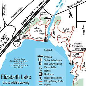 Elizabethx300.jpg
