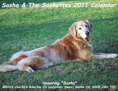Sashette Calendar 2011