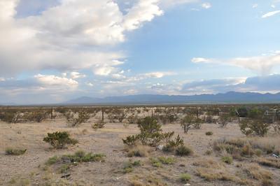 New Mexico & Texas