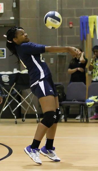 VCA-Volleyball-17.jpg