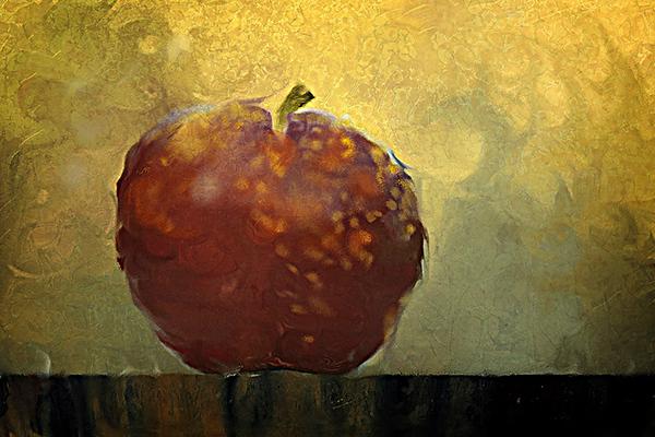 Painter version