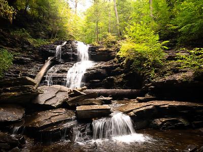 Rickett's Glenn State Park