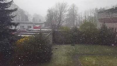 Ostermontag und es schneit - 5 April 2021