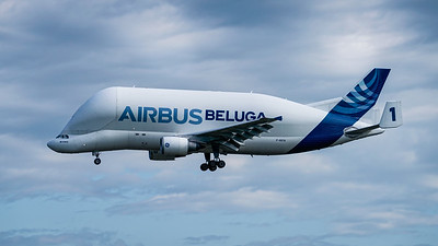 Airbus Transport International
