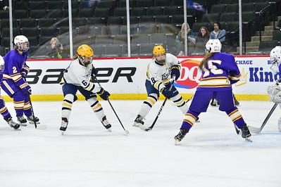 Girls Hockey Class A 19-20